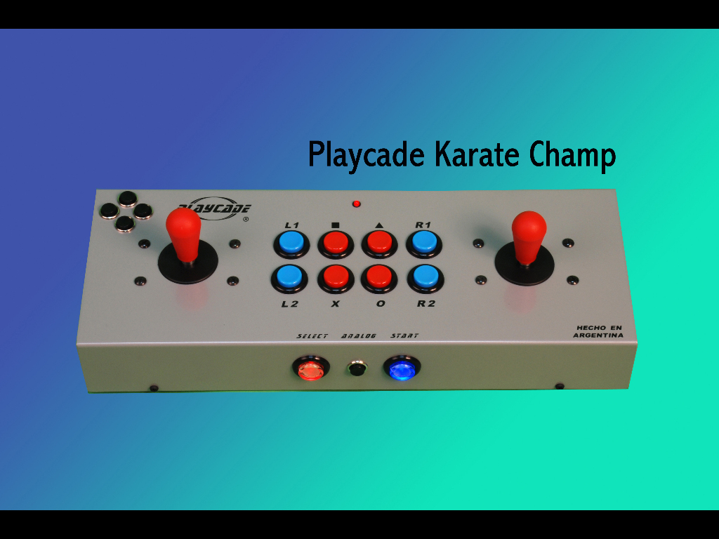 PLAYCADE KARATE CHAMP
